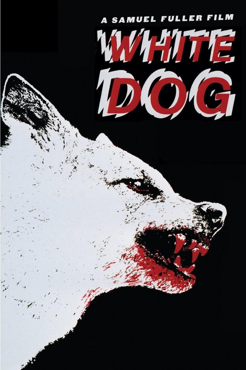 White-Dog-large