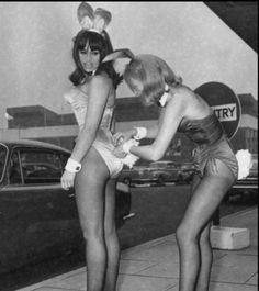 bunny05