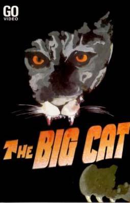 bigcat-go