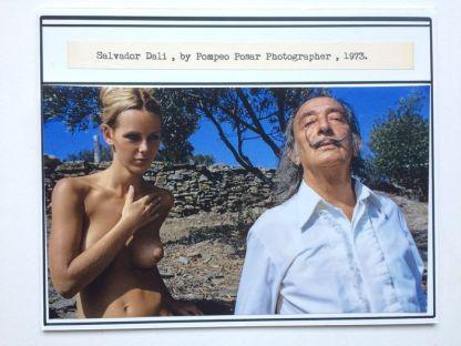 Dali-Playboy02