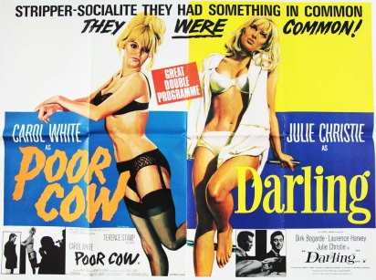 poorcow-darling
