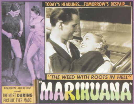marihuana-weed-with-roots-in-hell