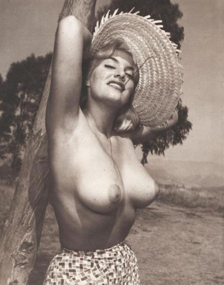 june-wilkinson-topless