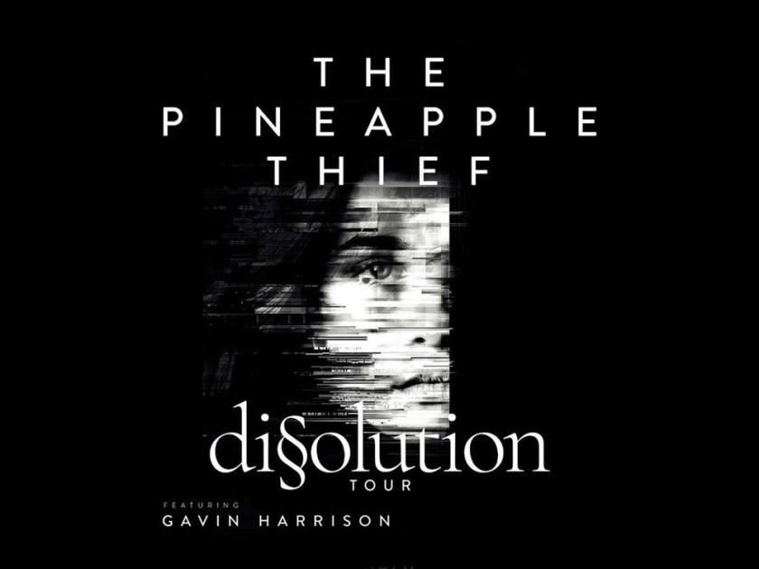 pineapple-thief-2