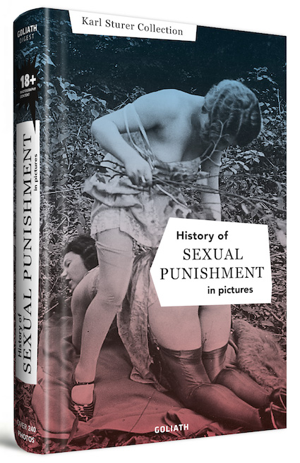 history-of-sexual-punishment-book-cover.jpg